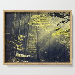 Being There - Morning Light in Forest Serving Tray