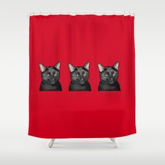 Three Black Cats on Red Shower Curtain