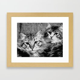 always start with cats Framed Art Print