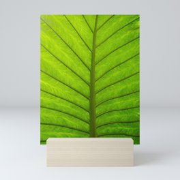 Palm leaf Mini Art Print