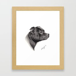 Staffy Framed Art Print