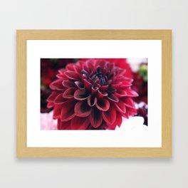 Hannah's Flower #2 Framed Art Print