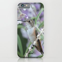 Ms. Hummingbird's Break Time in Mexican Sage iPhone Case