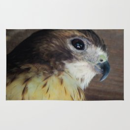 Red Tailed Hawk Rug