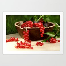 Delicious berries in still life Art Print