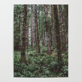Forest Dark, Forest Deep III Poster