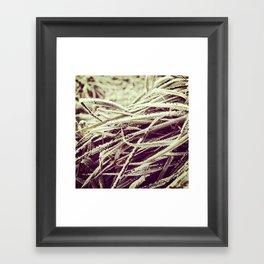 Frosty winter grass Framed Art Print