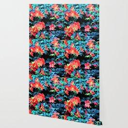 Red Geraniums Wallpaper