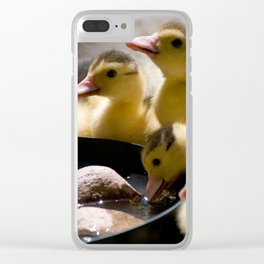 Yellow Muscovy duck ducklings Clear iPhone Case
