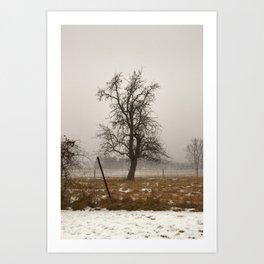 Tree Stands Tall Art Print
