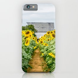 Follow the Yellow Flower Road iPhone Case