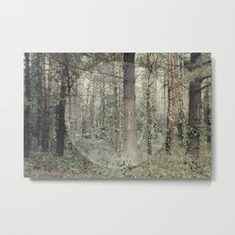 Cycle (Forest) Metal Print