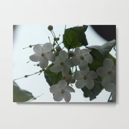 White against the Sky Metal Print