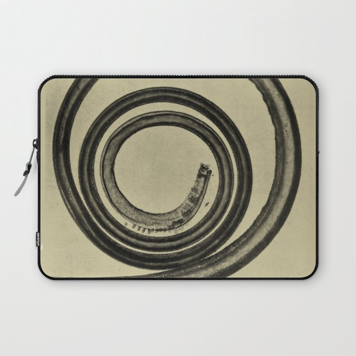 Butterfly Tongue Laptop Sleeve