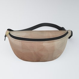 Gay Abstract 26 Fanny Pack