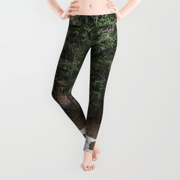 on the trail in breck Leggings