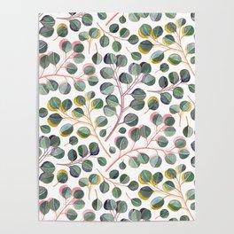 Simple Silver Dollar Eucalyptus Leaves Poster