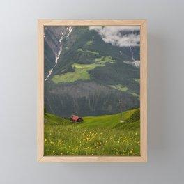 Switzerland Riederalp Photograph, Spring Flowers on the Swiss Alps Framed Mini Art Print