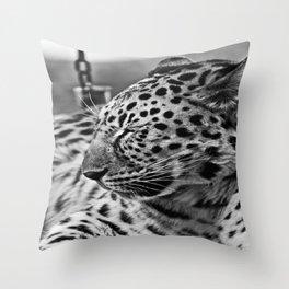 tRANQUILIDAD Throw Pillow