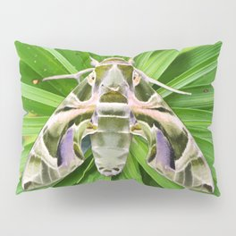 Oleander Hawk Moth on Radiating Plant Pillow Sham
