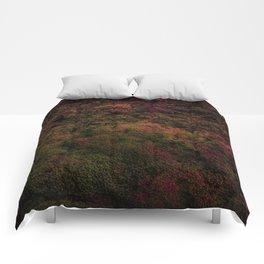 Dark Warmth Comforters