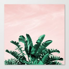 Turquoise Banana and palm Leaves Canvas Print