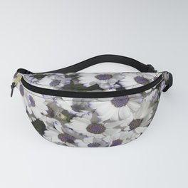 Cineraria White and Purple Fanny Pack