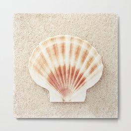 Scallop Shell Photography, Seashell Photograph, Peach Pastel Beach Photo Print Metal Print