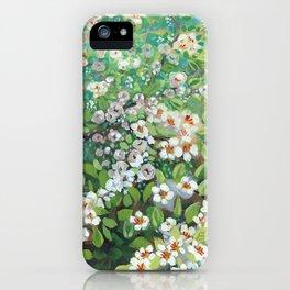 Cascading iPhone Case