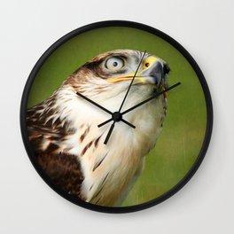 Ferruginous Hawk I Wall Clock
