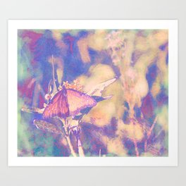 With Wings We Dream, Butterfly Art Art Print