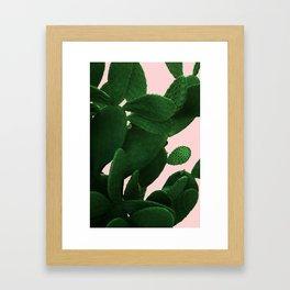 Cactus On Pink Framed Art Print