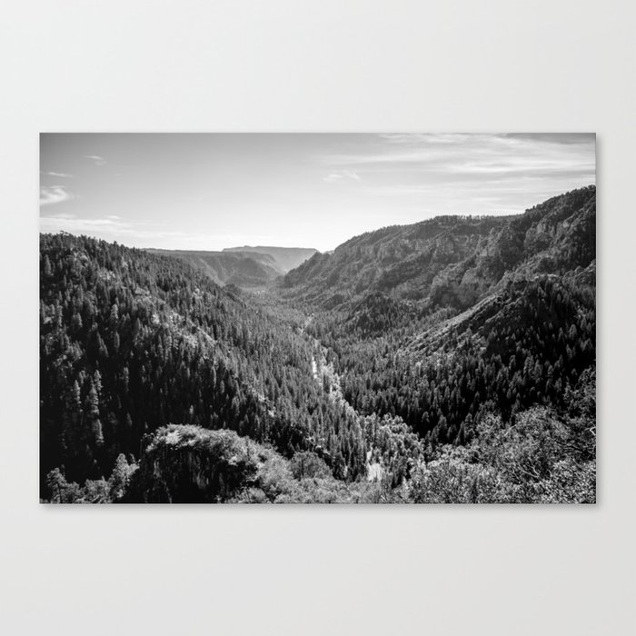 Black & White Arizona Canvas Print