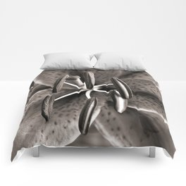 Lilly - Duplex Comforters
