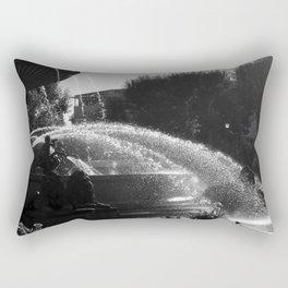 la fontaine de jouvence Rectangular Pillow