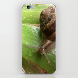 Snail on a Mission iPhone Skin