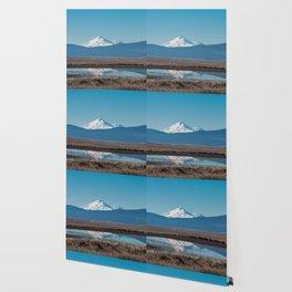 Mt Shasta Reflection Wallpaper