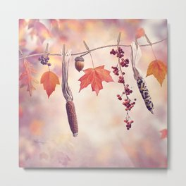 Autumn composition on colorful leaves background Metal Print