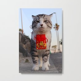 I am a cat to protect the security of the city. Metal Print