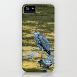 Great Blue Heron on a Golden River iPhone Case