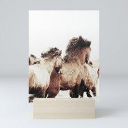 WILD AND FREE 2 - HORSES OF ICELAND Mini Art Print