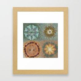 Unmorosely Rhythm Flower  ID:16165-030413-53640 Framed Art Print