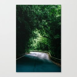 Driving the Hana Highway Canvas Print