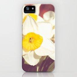 Daffodil flower iPhone Case