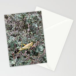 Yellow Cricket Stationery Cards