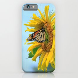 Monarch Butterfly on a Kansas Sunflower in a Garden with blue sky. iPhone Case