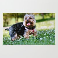 yorkie Area & Throw Rugs featuring Darling Yorkie by IowaShots