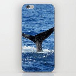 Whale Fluke iPhone Skin