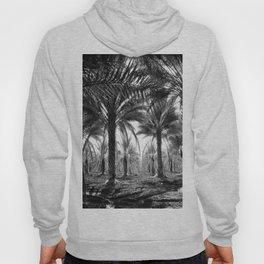 Vintage Palms Trees : Coachela Valley California 1937 Hoody