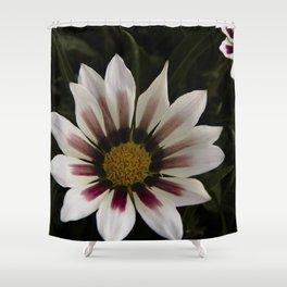 Flowers in summer Shower Curtain